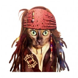 tee shirt cat sparrow...