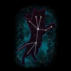 tee shirt star cat black sublimation