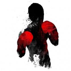 t-shirt fighter art white...