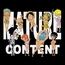 tee shirt One Piece Hentai...