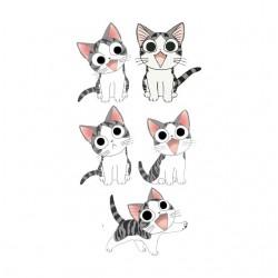 tee shirt chi the white cat...