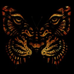 tee shirt butterfly tiger  sublimation