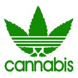 white sublimation cannabis...