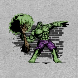 tee shirt the hulk funny gray sublimation