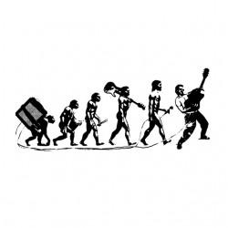 tee shirt evolution du rock...