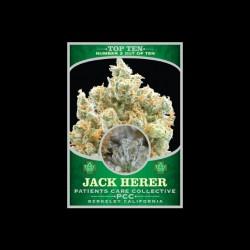 Jack Herer cannabis t-shirt Top Ten black sublimation