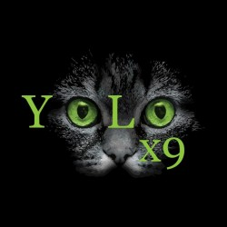 teeshirt yolo black cat sublimation