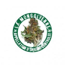 Tee shirt La Beuze La mongolienne cannabis AOC  sublimation