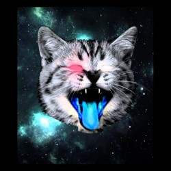 t-shirt space cat fluo special black sublimation
