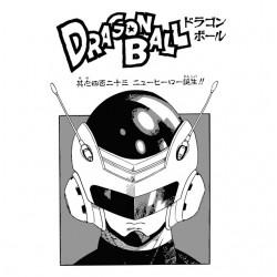dragon ball t-shirt...