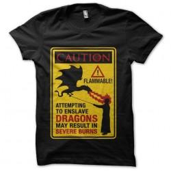 slay dragon caution...