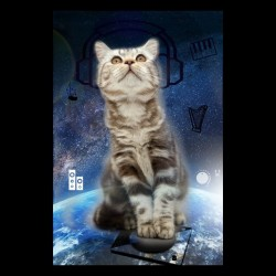 cat techno t-shirt in da space sublimation