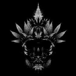 shirt cannabis skull black...