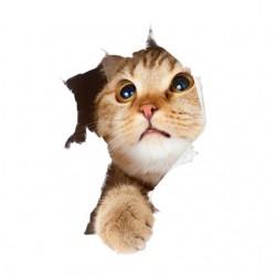 tee shirt cat lovely...
