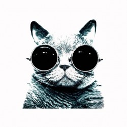 Tee shirt lenon cat glasses...