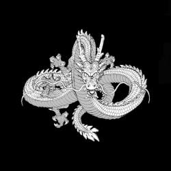 T-shirt black Dragon black & white sublimation