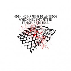 tee shirt Game of thrones - Stark  sublimation
