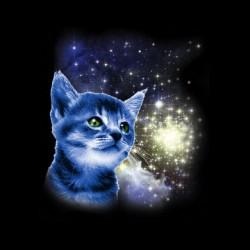 tee shirt le chat dans l'espace sublimation