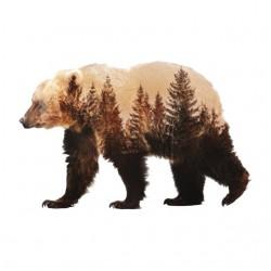 mountain bear sublimation shirt