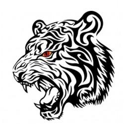 Tee shirt yeux du tigre  en...