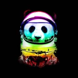 tee shirt space panda sublimation