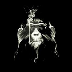 monkey shirt that smokes sublimation