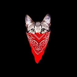 gangster sublimation cat shirt