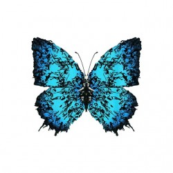tee shirt papillon fashion...