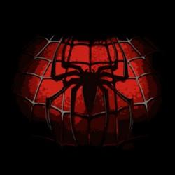 Tee shirt Spiderman nouveau costume  sublimation