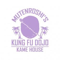 shirt mutenroshi kung fu...