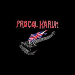 tee shirt procol harum vintage sublimation