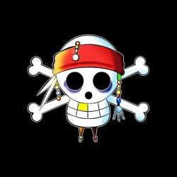 one piece pirate sublimation parody shirt