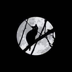 Tee shirt Chat au clair de lune  sublimation