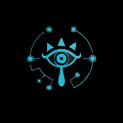 tee shirt sanctuaire logo sublimation