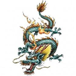 T-shirt dragon green tattoo white sublimation