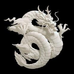 T-shirt dragon tattoo in black jade sublimation