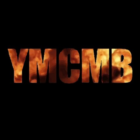 T-shirt YMCMB fire black sublimation