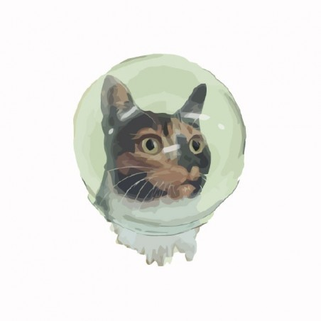 Tee shirt Astro Cat  sublimation