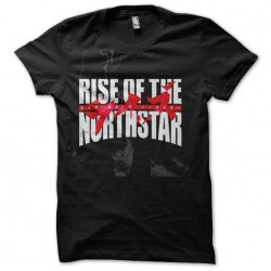 rise of the northstar...