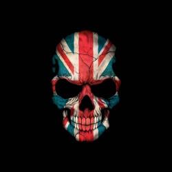 tee shirt english skull sublimation