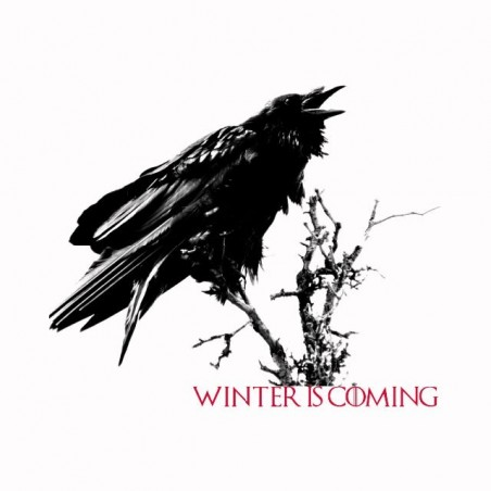 Winter is coming raven Game of Thrones white sublimation t-shirt