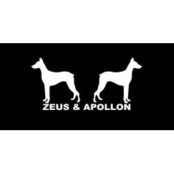 Tee shirt Zeus & Apollo Magnum black sublimation