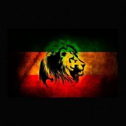 T-shirt Rasta Lion black...