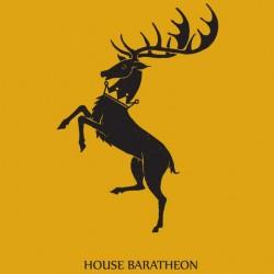 Tee shirt Le Trône de fer tee shirt maison Baratheon Game of thrones  sublimation