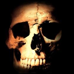 T-Shirt Shirt skull graphic...