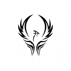 Tee shirt Phoenix tattoo...