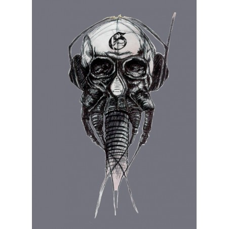 Tee shirt Skull effect ages Gray sublimation