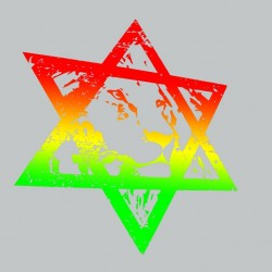 Tee shirt  LION of JUDAH  original GRIS  sublimation