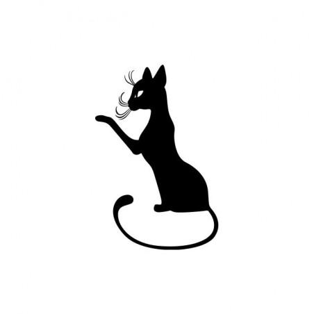 Cat t-shirt that raises the white paw sublimation
