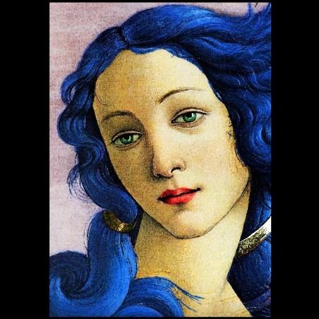 Venus de Botticelli 't-shirt by brett66 black sublimation